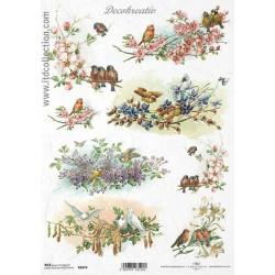 Ryžový papier A4 - Vtáčiky...