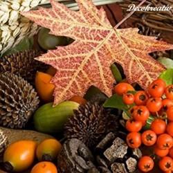 Servítka 33x33 cm Autumn -...