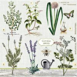 Servítka 33 x 33 cm Herbs...